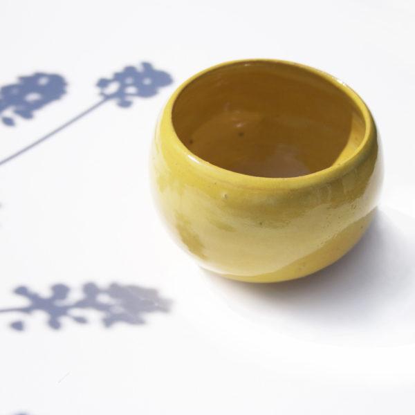 Teacup Mimosa Ping & Moos